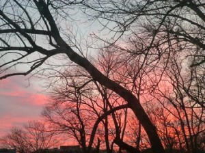 2012 Dec 20 sunrise 005