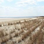 2013 March 13-18 DE & NJ 164